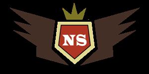 netpreneur-summit-Logo